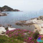 Cotoncello Beach - Sant Andrea