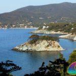 Small Island Paolina Procchio