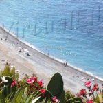 Colle Palombaia beach