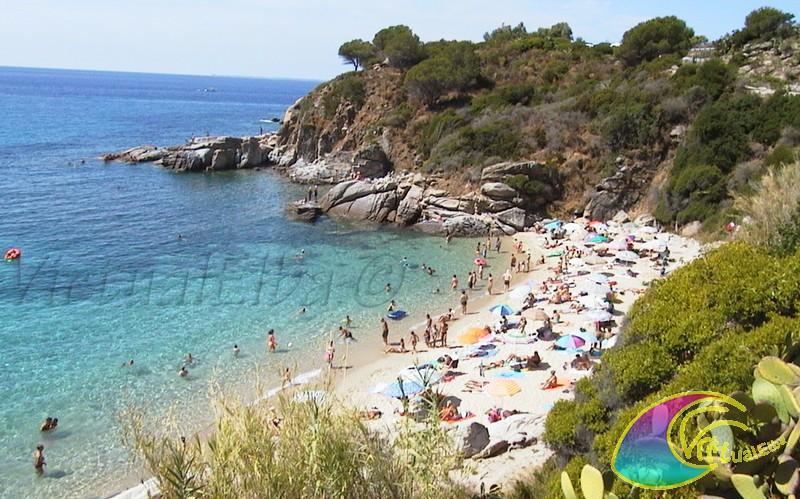 Cavoli Spiaggia Elba