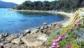 La Spiaggiola della Guardiola Procchio