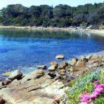 Small beach Guardiola Procchio
