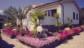 Ginepro Appartamenti Tallinucci a Lacona