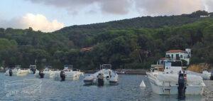 Elba Rent Boat Rent Malua