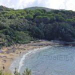The Barabarca beach Capoliveri